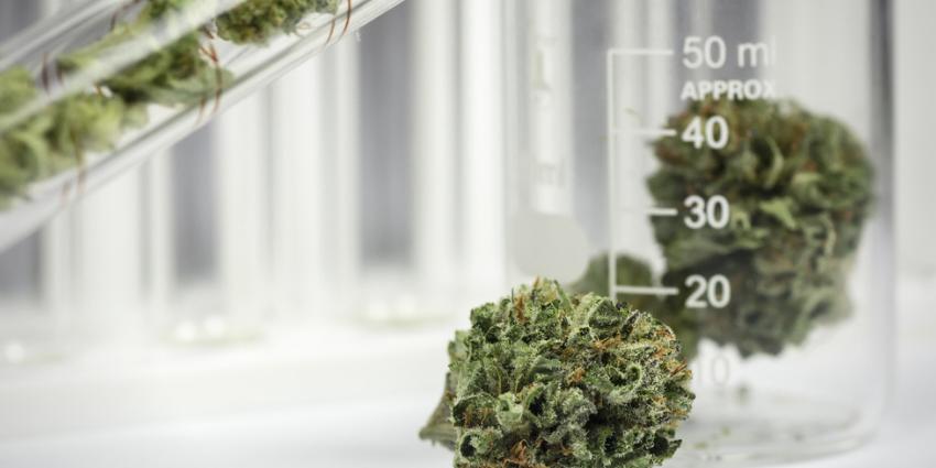 Measuring Cannabis Impairment